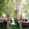 結婚過程備忘錄
